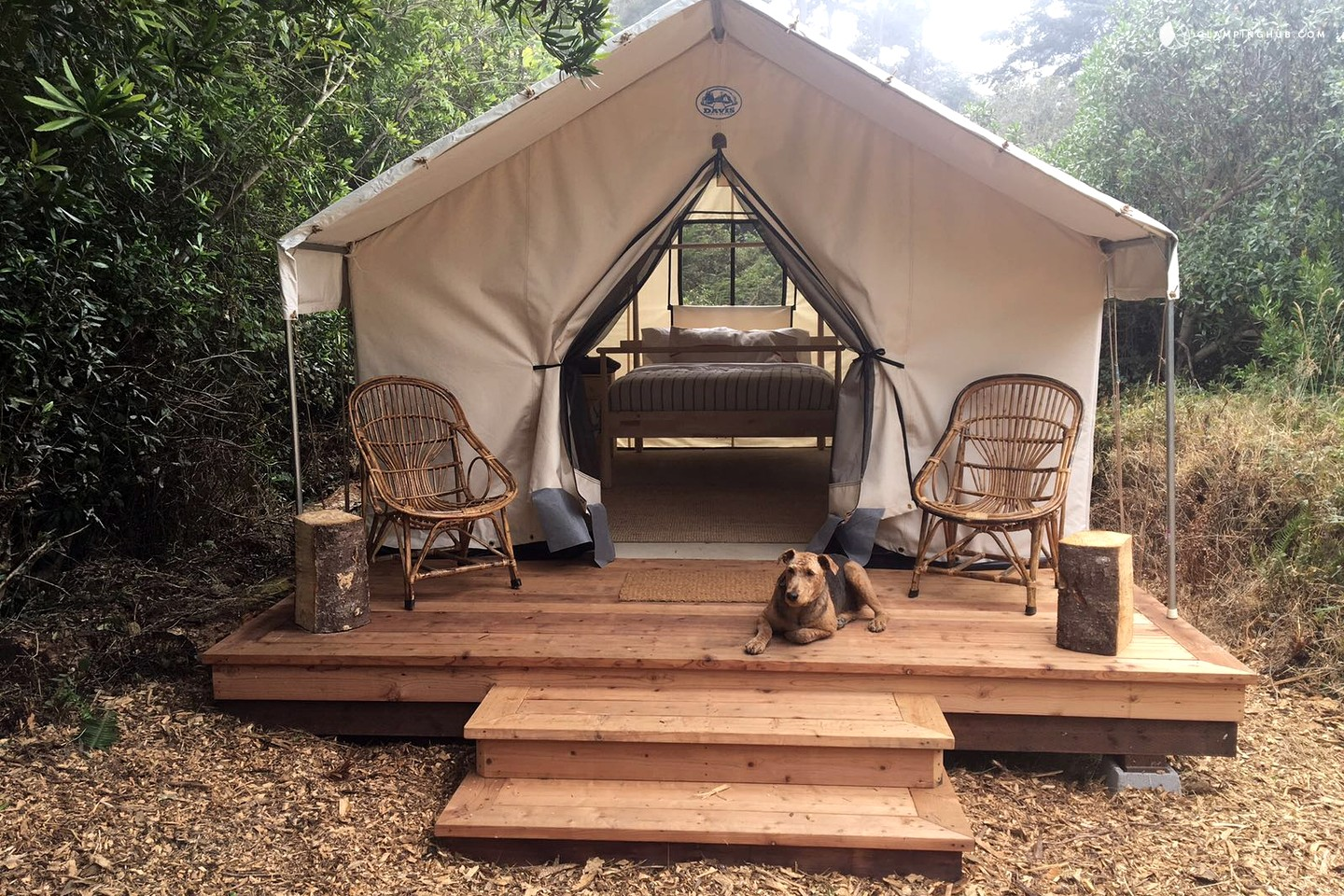 Peaceful Safari Tent C&ing in Coastal Woodlands  Hopaway Holiday - Vacation and Leisure Services & Peaceful Safari Tent Camping in Coastal Woodlands : Hopaway Holiday ...